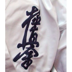 Gi Kyokushin Master