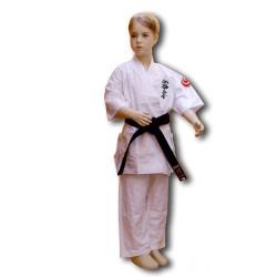 Shinkyokushin Karategi Standard (Kumite)