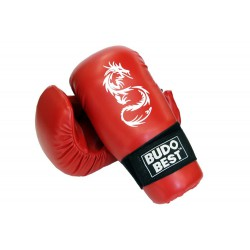 Kick Boxing gloves - WAKO