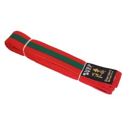 Striped belt - 4 cm