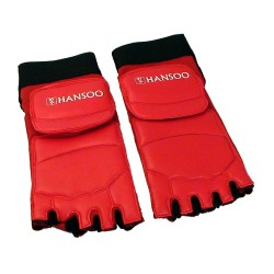 Hansoo - Taekwondo Instep