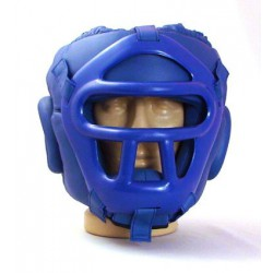 Plastic Mask Headguard