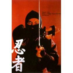 Poster arte marțiale H-219 - Ninja