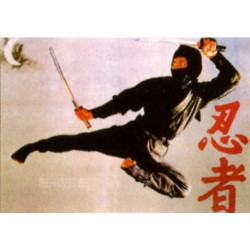 Poster arte marțiale H-220 + Ninja