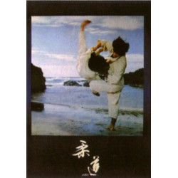 Poster arte marțiale H-224 Judo Lac