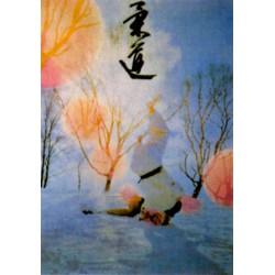 Poster arte marțiale H-226 - Judo Iarna