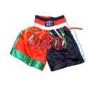 Pantaloni Muay Thai model C
