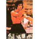 Poster arte marțiale H-214 - Bruce Lee
