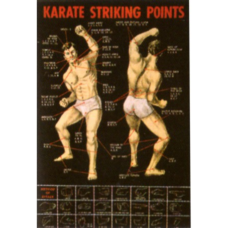 Poster arte marțiale H-218 - Puncte Vitale