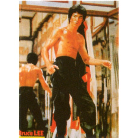 Poster arte marțiale H-228 - Bruce Lee