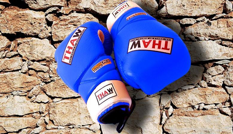 Echipament MMA