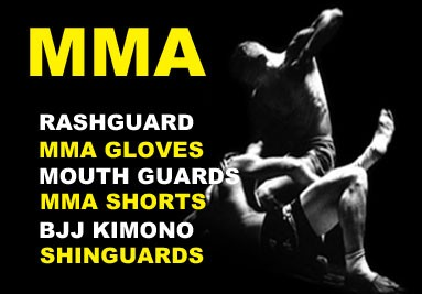 MMA lupta